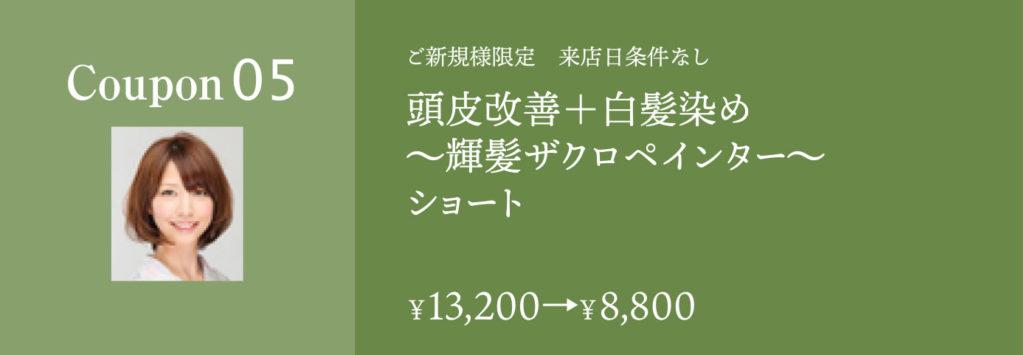 頭皮改善+白髪染め ザクロペインターショート13200円→8800円