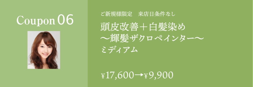 頭皮改善+白髪染め ザクロペインターミディアム17600円→9900円